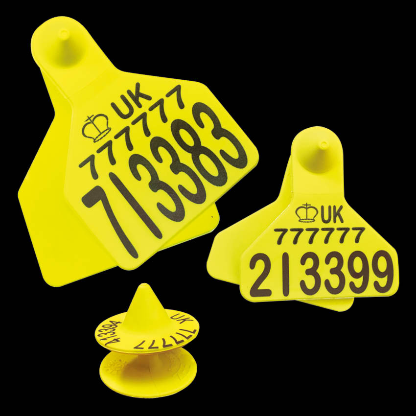 Official EID cattle ear tags